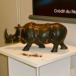 expo credit du nord clermont rhino